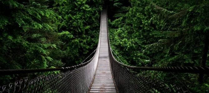 Visiting the Capilano Suspension Bridge