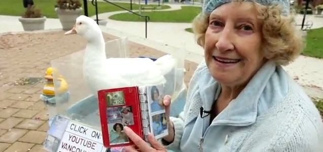I Met the Vancouver Duck Lady