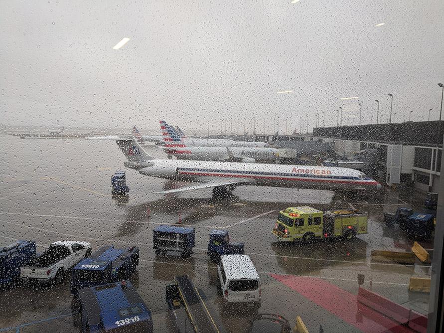 Japan Airlines Jl9 773 Business Class Flight Review